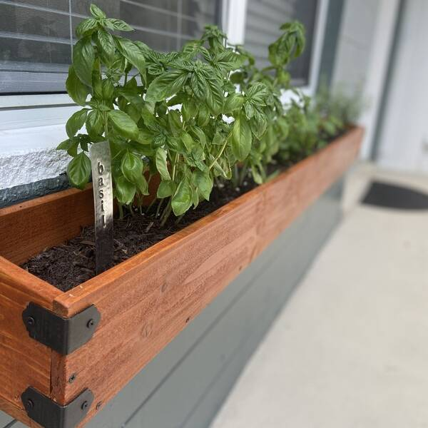 Photo: Herb Window Planter