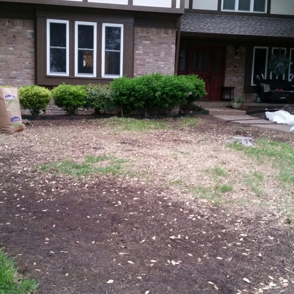 Photo: Front yard makeover