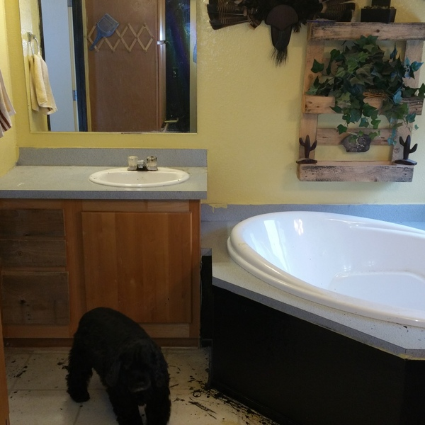 Photo: Master Bath Remodel