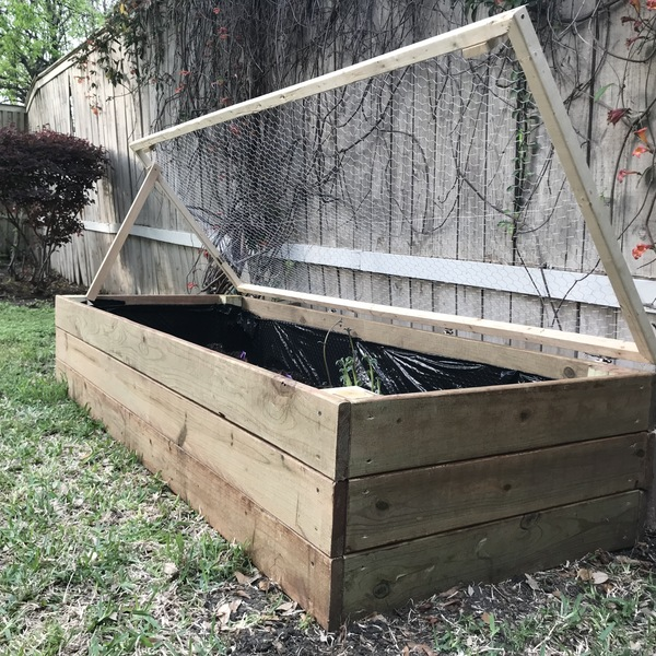 1000 Ideas About Enclosed Bed On Pinterest: Enclosed Raised Garden Bed