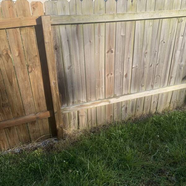 Photo: Clean fence