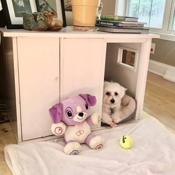 Photo: Side Table Plus Puppy Crate