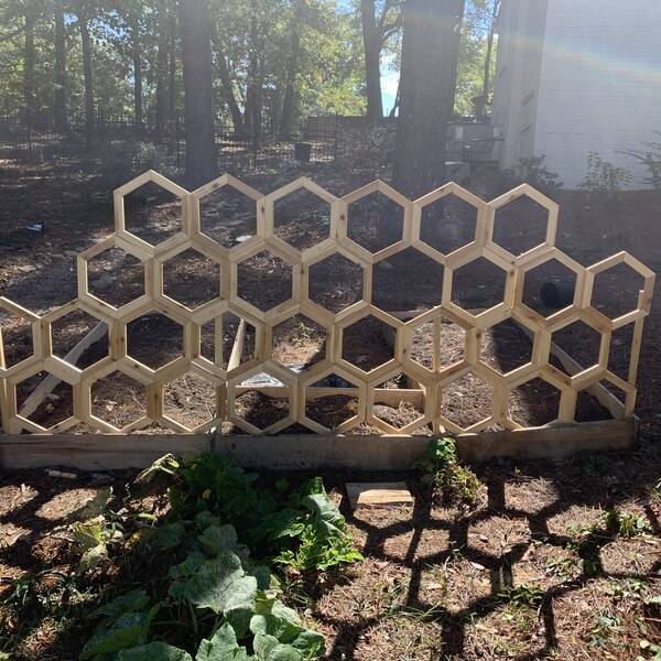Photo: Honeycomb Trellis for raised garden bed