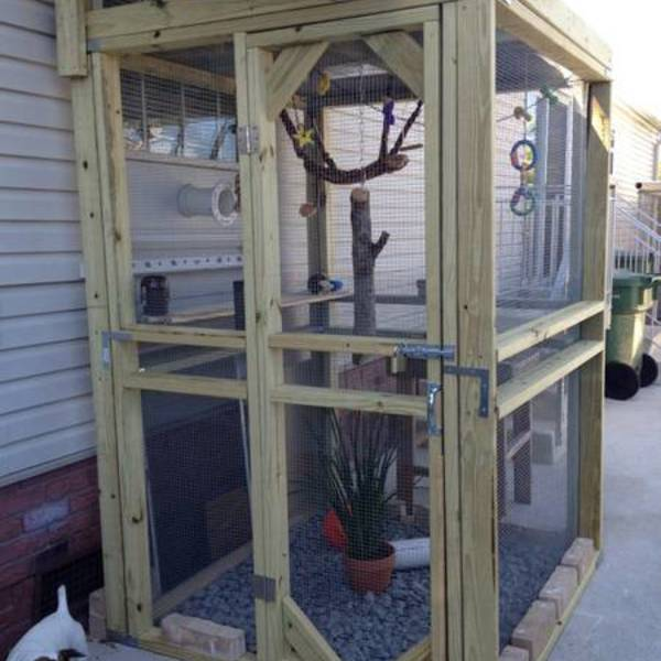 Outdoor Marmoset Monkey Cage Ryobi Nation Projects
