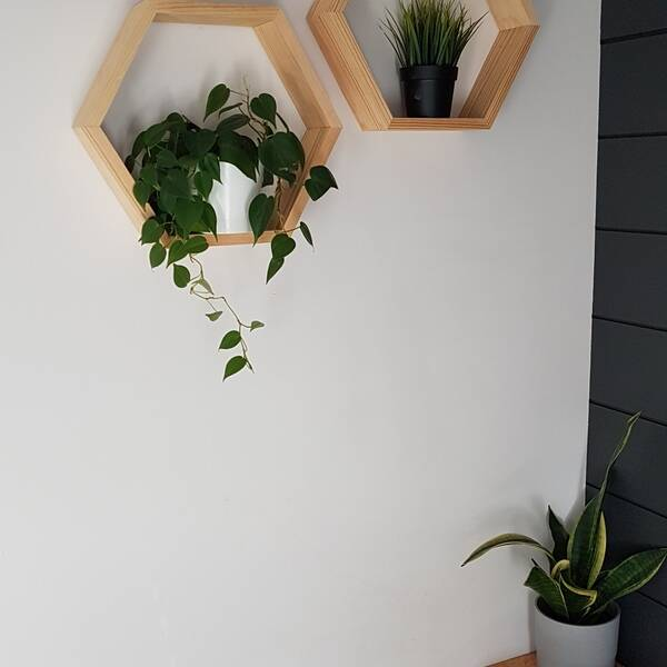 Photo: Hexagon shelves