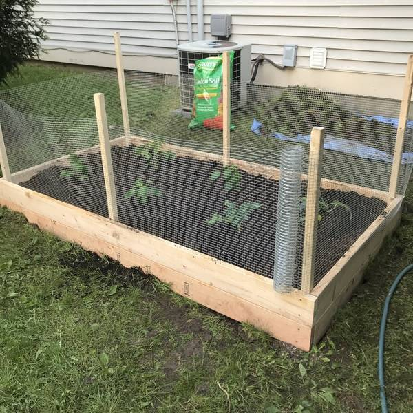 Photo: Raised Garden Bed