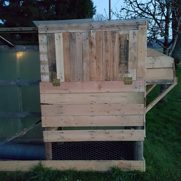 Wonderful Diy Recycled Chicken Coops: Recycled Pallet Board Chicken Coop