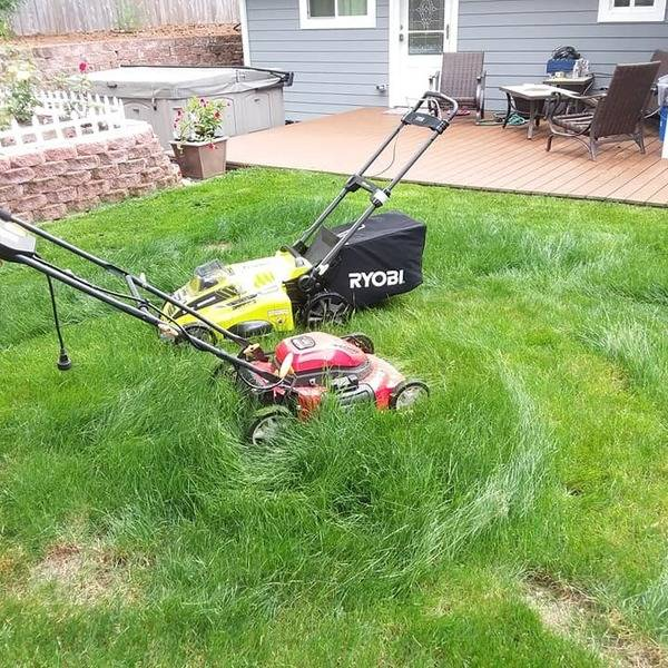 Photo: Yard work - got a new mower