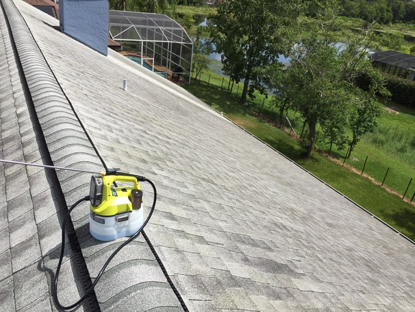 Roof Mildew Spray Removal Project